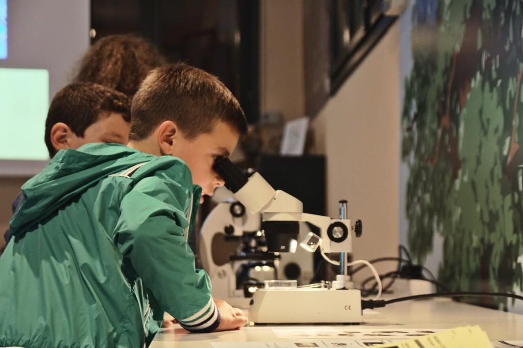 Museo Storia Naturale Ferrara